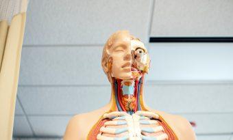 La Réforme des Études de Santé